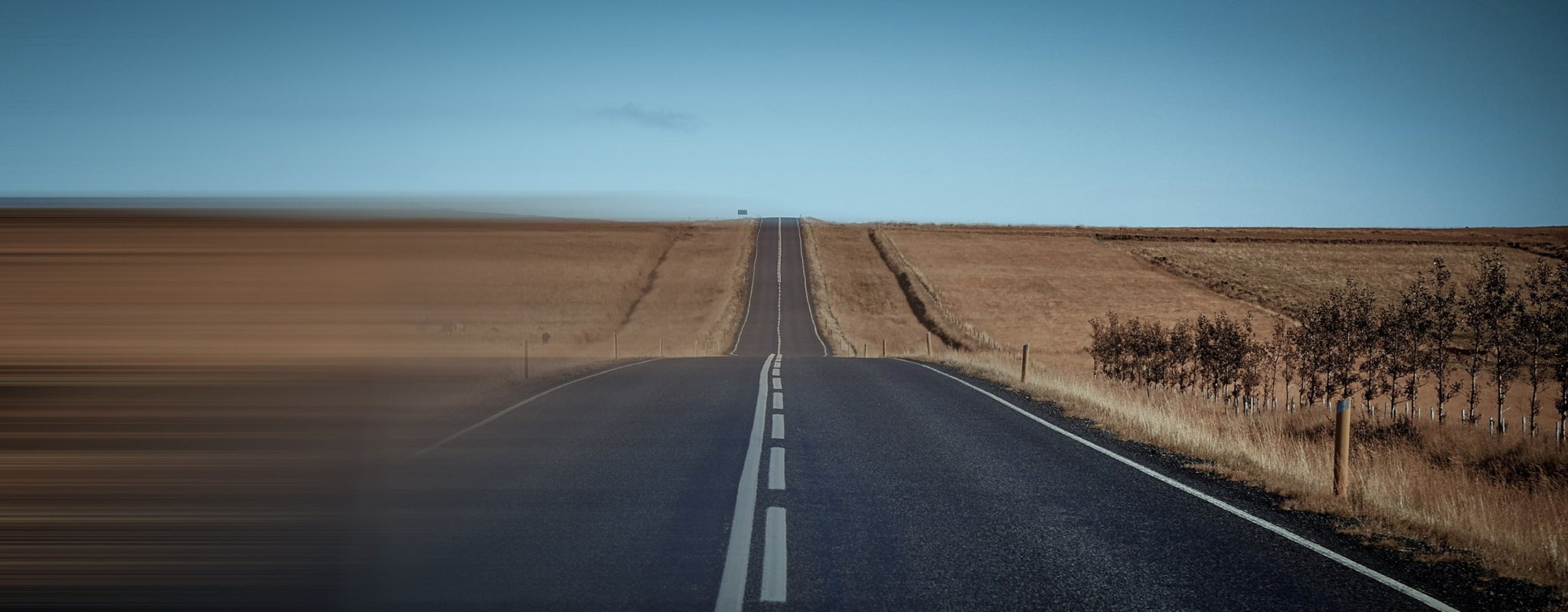A road between to fields