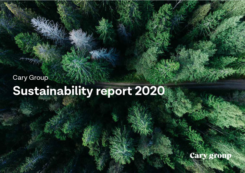 """The text """"Sustainability report 2020"""" with a forest in the background"""